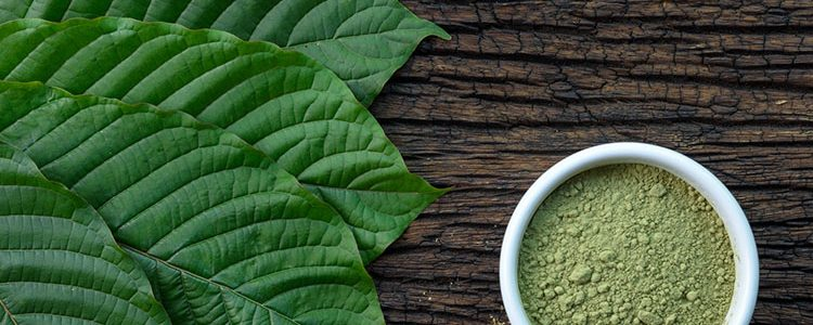 Increase Your Purchase Kratom With The Following Pointers