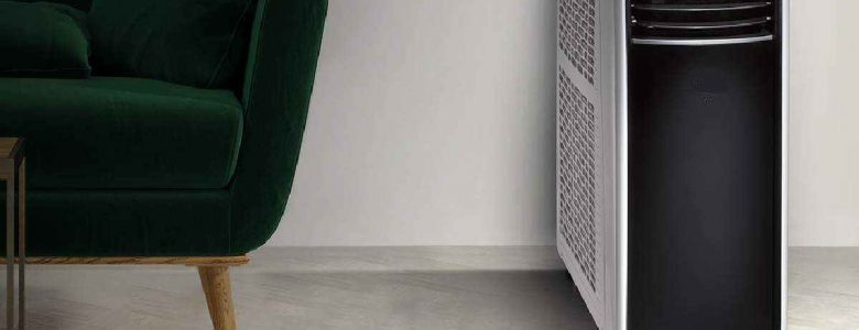 Is The Year Of Dehumidifier
